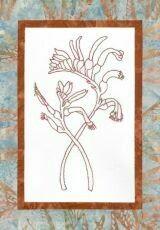 44734 Floral Emblem Stitchery Kangaroo Paw $20