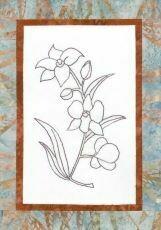 44731 Floral Emblem Stitchery Cooktown Orchid $20