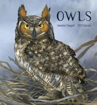 Owls: Jeannine Chappell 2022 Wall Calendar