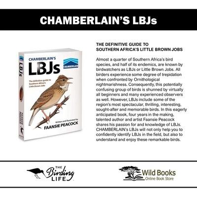 CHAMBERLAIN'S LBJs