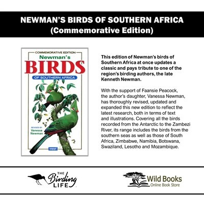 Newman's Birds Of Southern Africa pvc (Commemorative Edition)