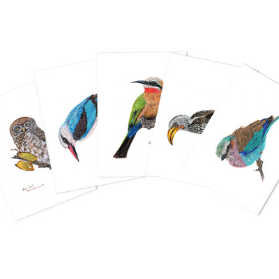 Pack of A6 Greeting Cards (Bushveld Birds)