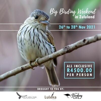 Birding Big Weekend - November 2021