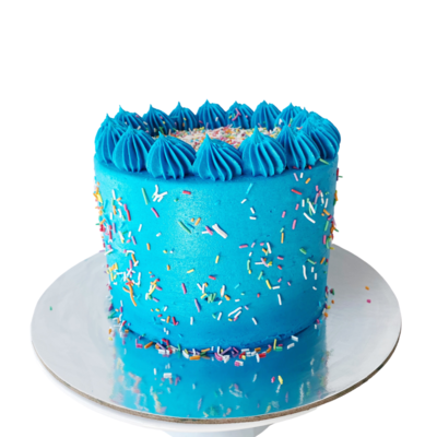 Blue Party Cake