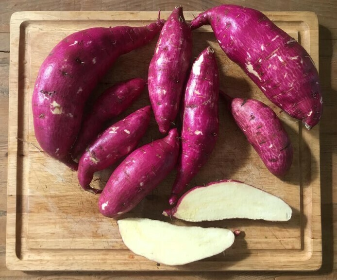 Murasaki Sweet Potatoes 10 Pounds
