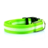Green LED Collar