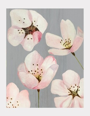 Art Print:  Cherry Blossoms on Grey