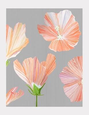 Art Print:  Orange Hibiscus on Grey