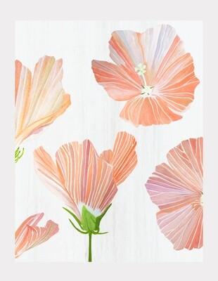 Art Print:  Orange Hibiscus on Snow