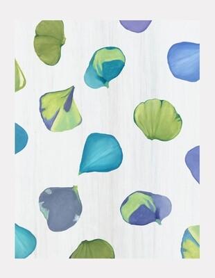 Art Print:  Blue Hydrangea Petals on Snow