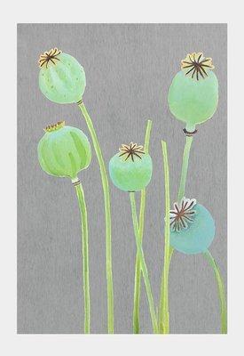 Art Print:  Poppy Pods on Grey