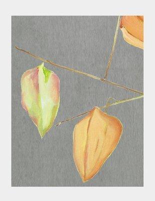 Art Print:  Lanterns on Grey