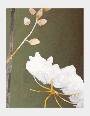 Art Print:  Big White Flower on Green