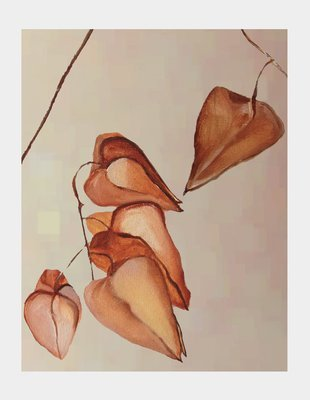 Art Print:  Dried Lanterns on Mist