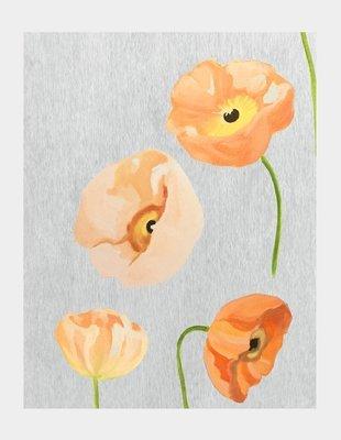 Art Print:  Peach Poppies on Grey