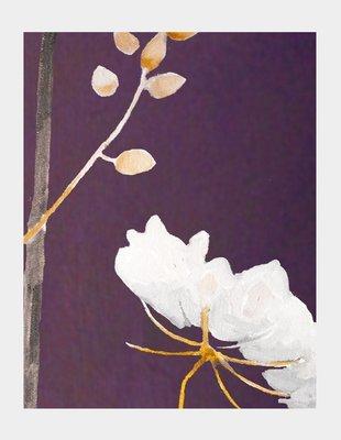 Art Print:  Big White Flower on Plum