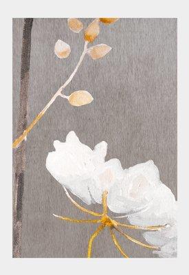 Art Print:  Big White Flower on Medium Grey