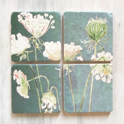 Coaster Set:  Queen Anne's Lace on Teal