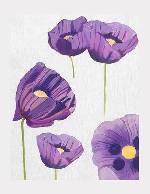 Art Print:  Purple Poppies on Snow