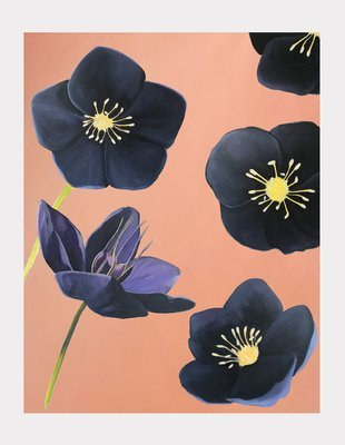 Art Print:  Black Hellebore on Rose Gold