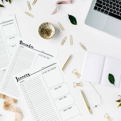 Digital Download 12 Month Planner   365 Days   Monthly Goals   Printable