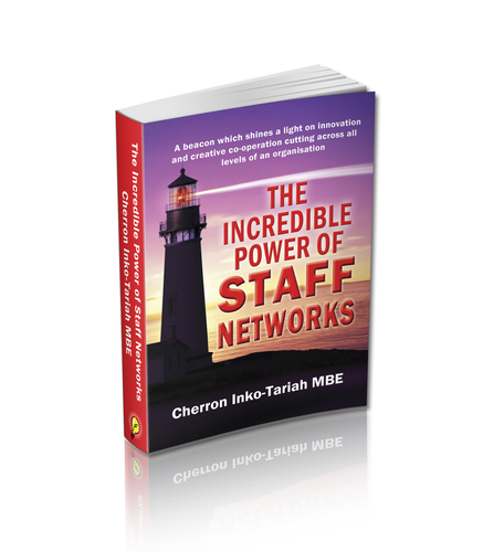 The Incredible Power of Staff Networks - Paperback