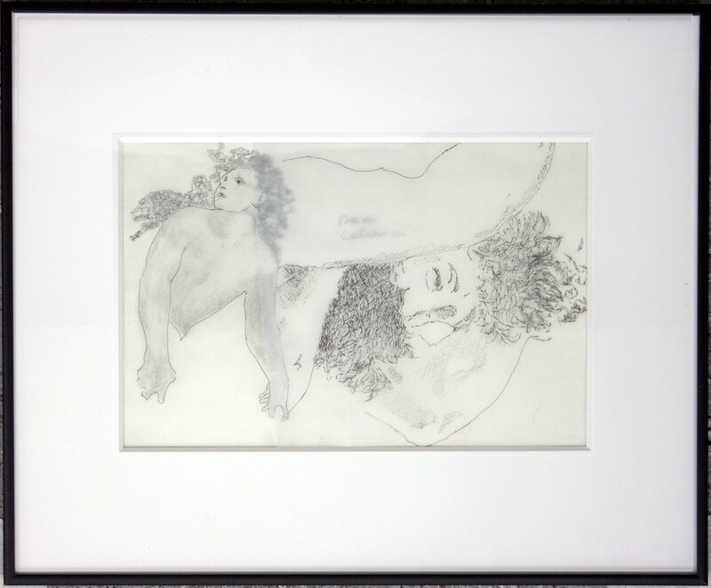 Original drawings (framed)