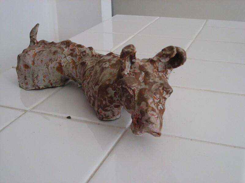 Dog Without Legs Paddling.