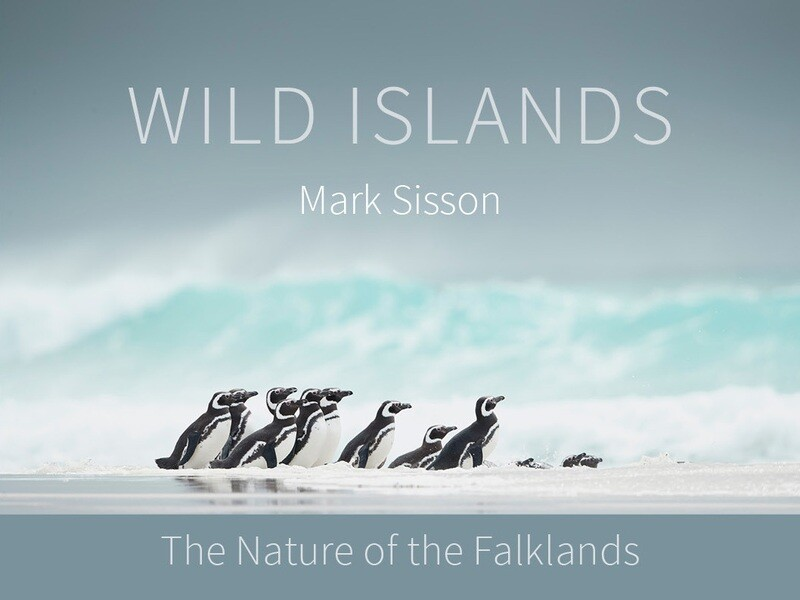 Wild Islands: The Nature of the Falklands