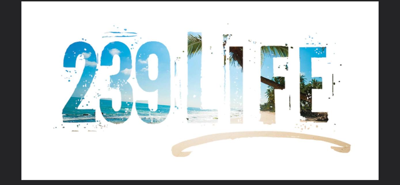 239Life Beach Horizon Vinyl Window Decal
