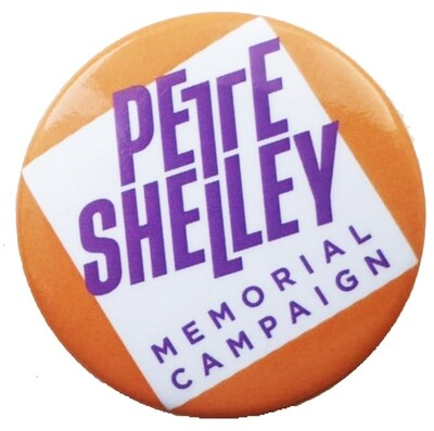 38mm Campaign logo button badges - orange or green