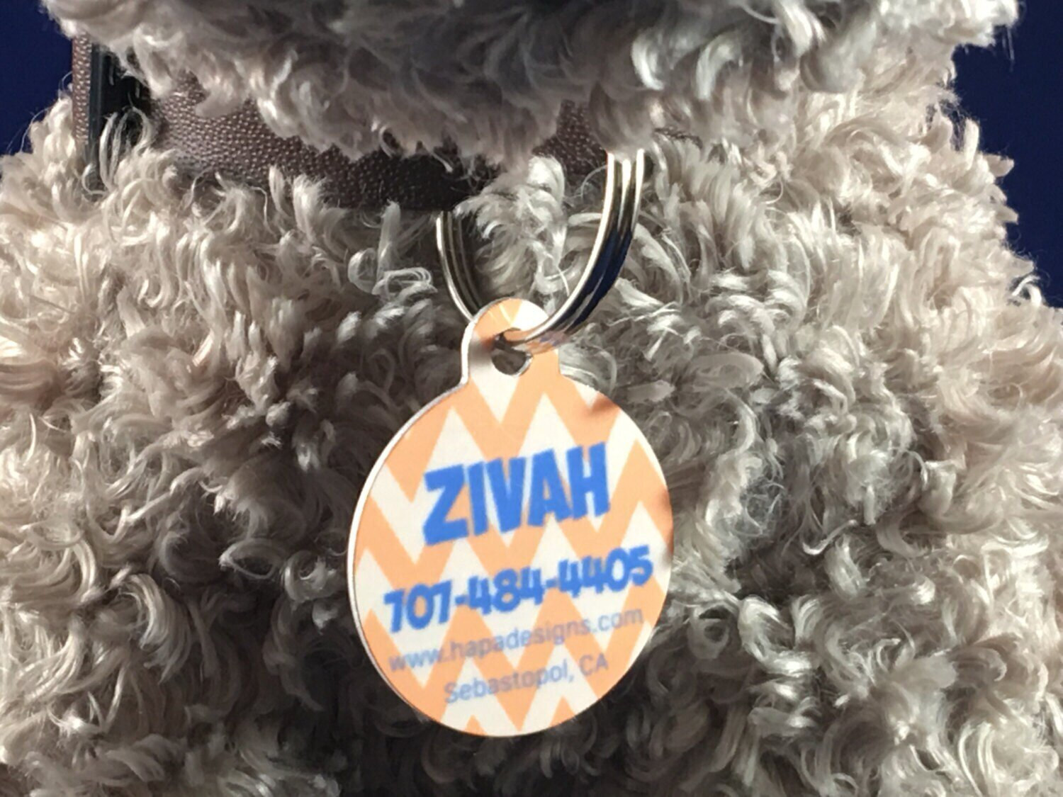 Customized Photo Pet Tag - Dog Cat Pets ID Tags Dye Sublimation! 100% Satisfaction! FREE SS split ring! Personalized pet's image