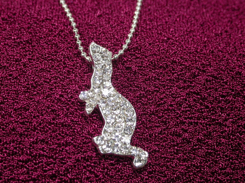 Ferret Clear Rhinestone Necklace - Small