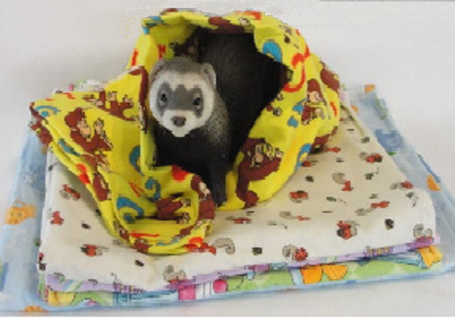 Ferret Snuggle Sleeper Blanket