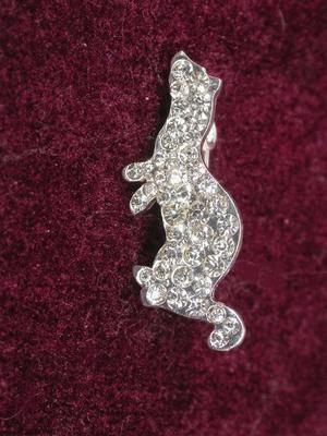 Ferret Clear Rhinestone Pin - Small