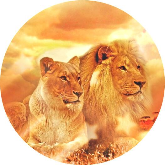 Ключевое масло - Эликсир Льва
