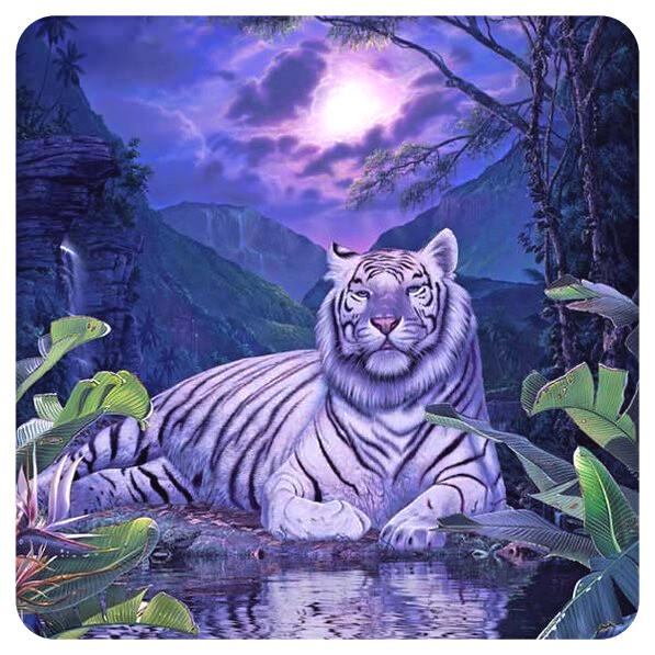 Руны Белого Тигра