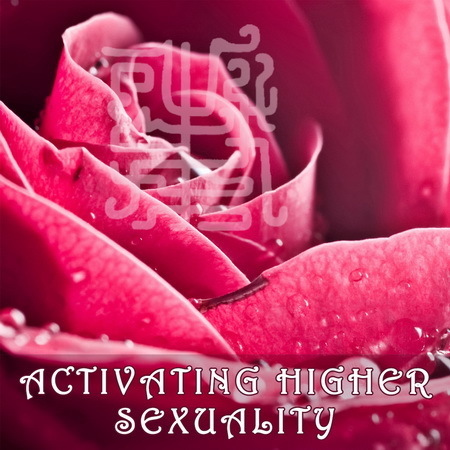Activating Higher Sexuality. Activating the 24 Inner and 24 Outer Chakras