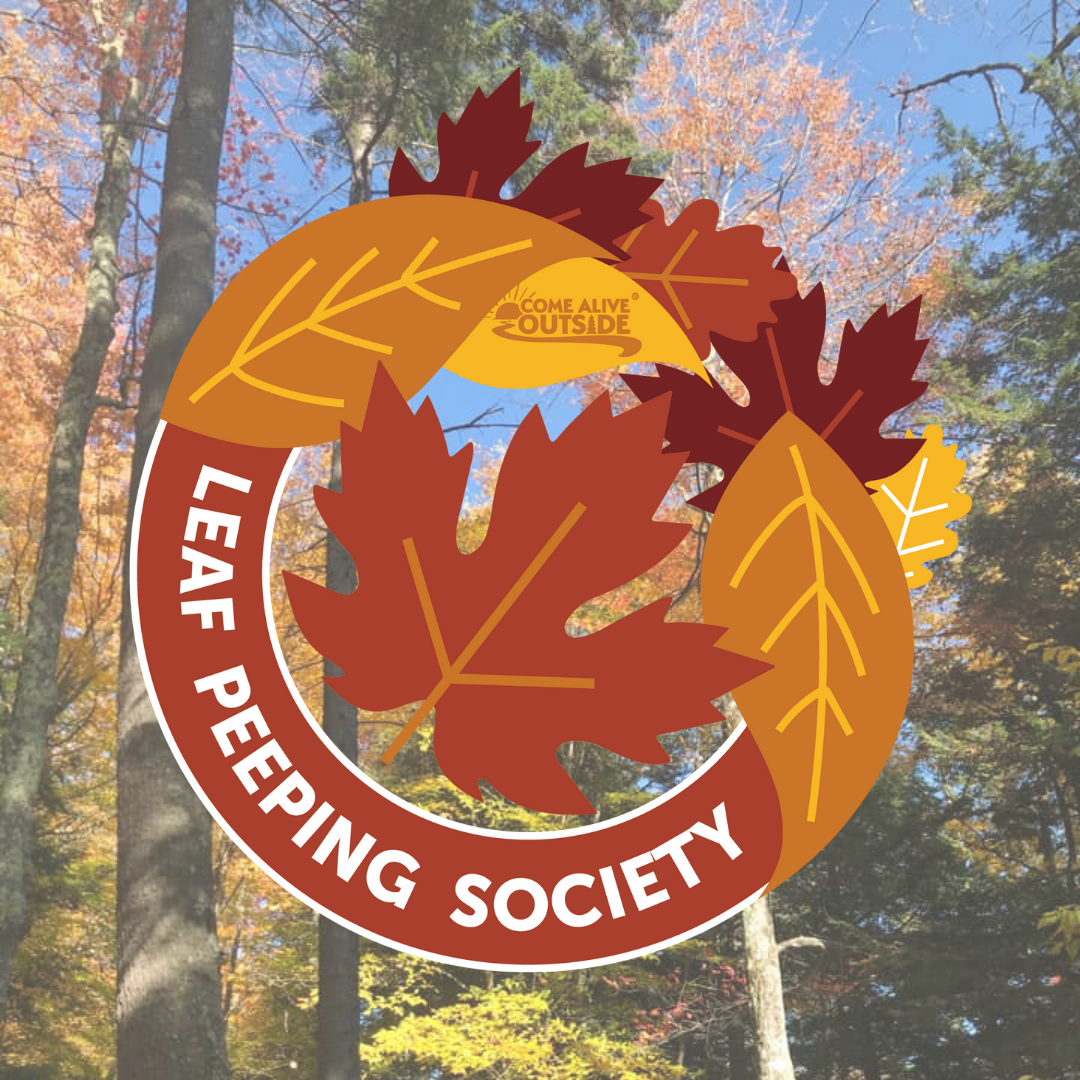 DONATE a Leaf Peeping Society Membership to Someone