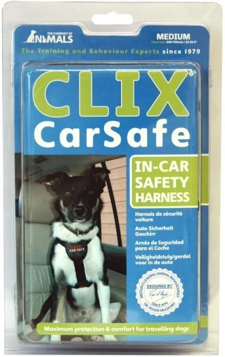 COA LC03 Car Safe