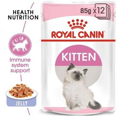 FELINE HEALTH NUTRITION KITTEN
