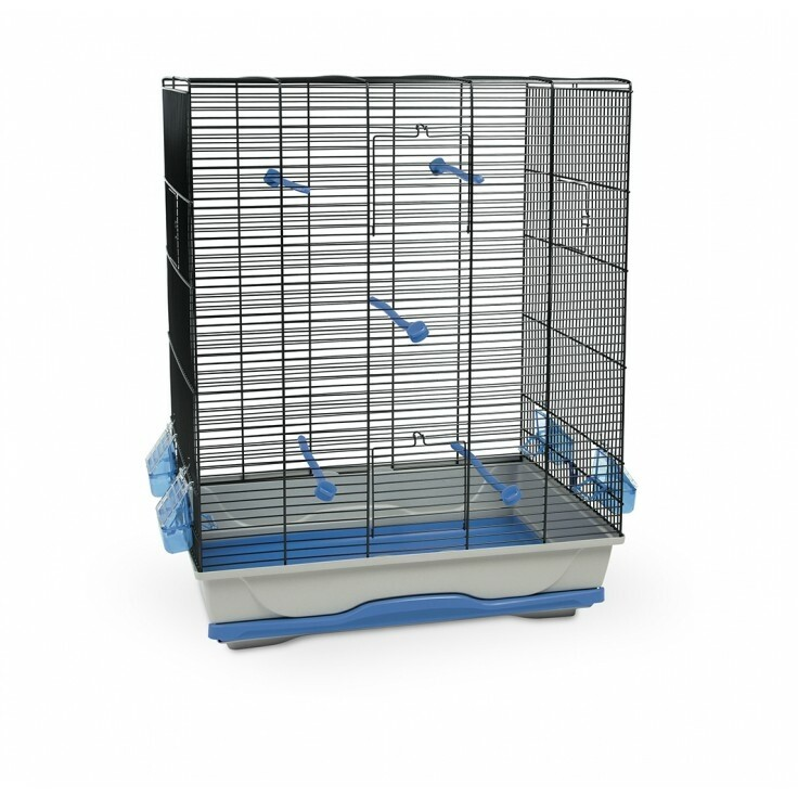 AMBRA BIRD CAGE BLUE & BLACK