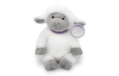 Cuddle Sheep