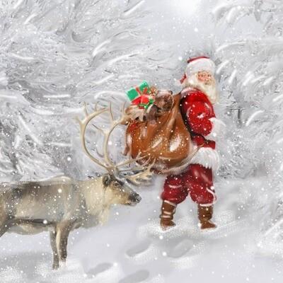 Christmas Card Pack - Reindeer Design