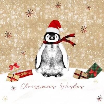 Christmas Card Pack - Penguin Design