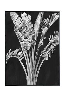 Palm Springs Art in Greyscale