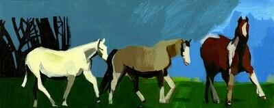Wild Horses on Portmeadow, Oxford