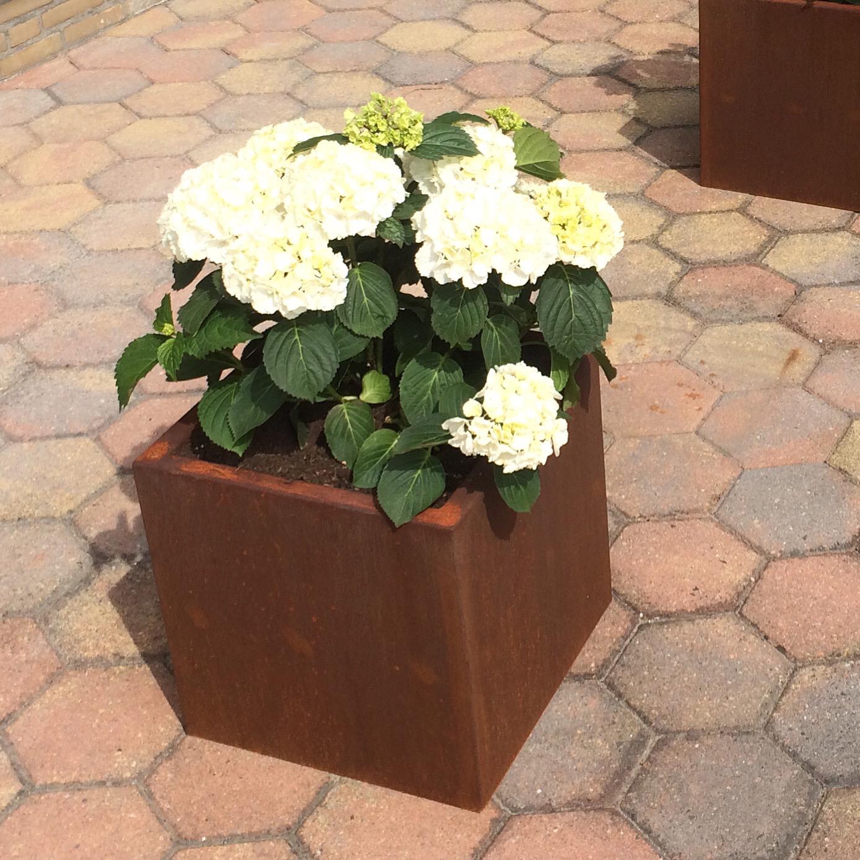 Plantenbak 700x700x900 (LxBxH in mm)