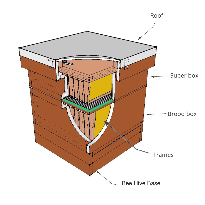 National Bee Hives Parts
