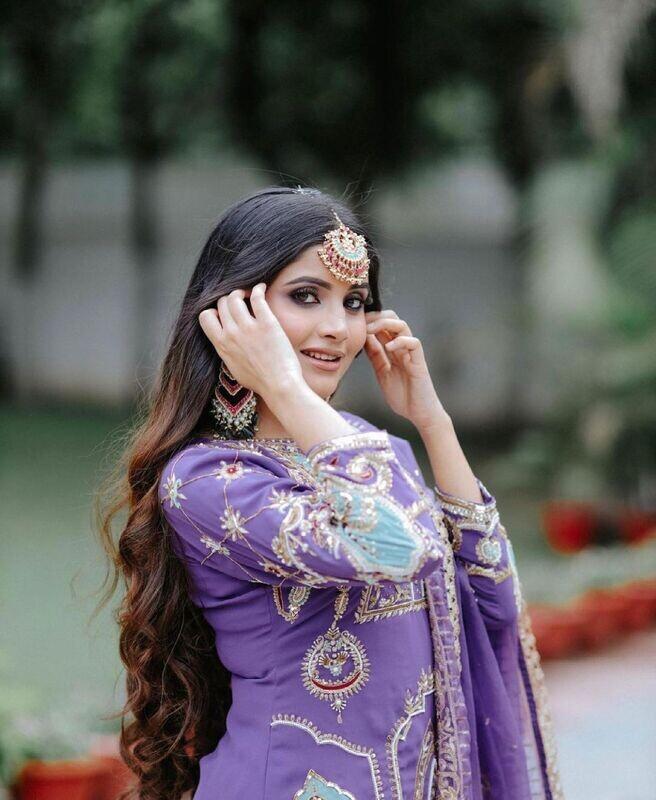 Purple Punjabi Boutique Suit